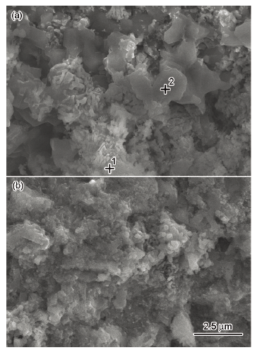 Effect of heat treatment of titanium alloy surface on high temperature oxidation resistance